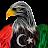 Libya storm avatar image