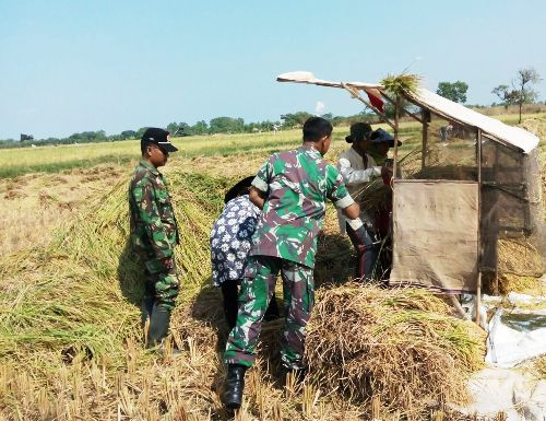 Bangkalan: Personel TNI di Bangkalan Bantu Petani Atasi Kekeringan