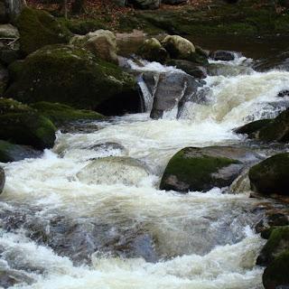 rzeka1.jpg