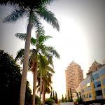 Piękny chodniczek, jeszcze na terenie Bukit Indah...
