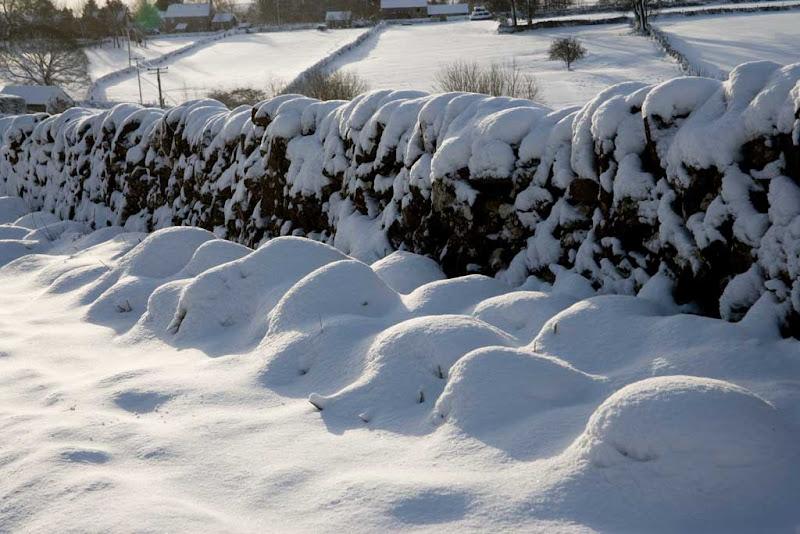 snow2010-2