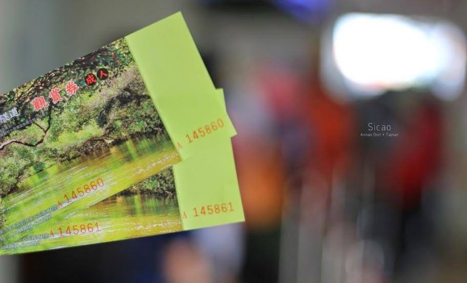 台南安南景點,四草綠色隧道-3