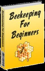 artist bees