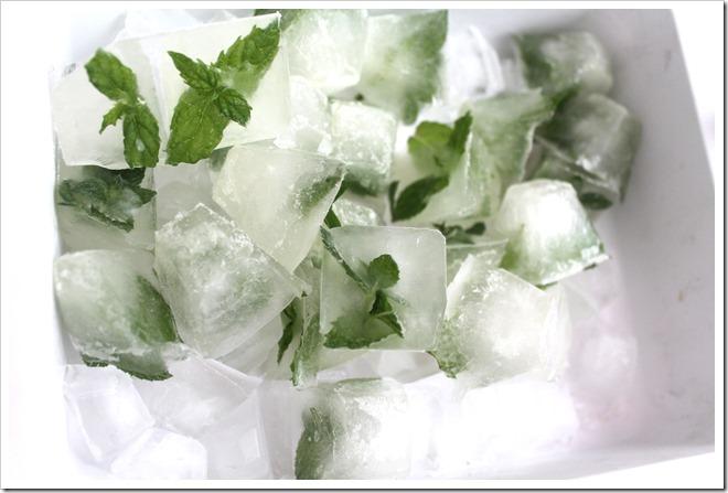 kostki lodu z miętą i cytryną (5)
