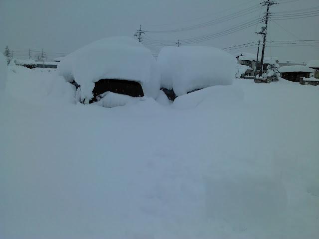 2014年 山梨 大雪