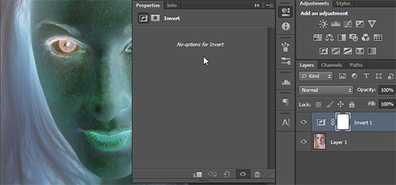Ajuste de camada Inverter do Photoshop