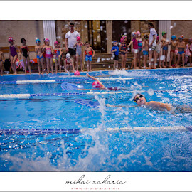 20161217-Little-Swimmers-IV-concurs-0095