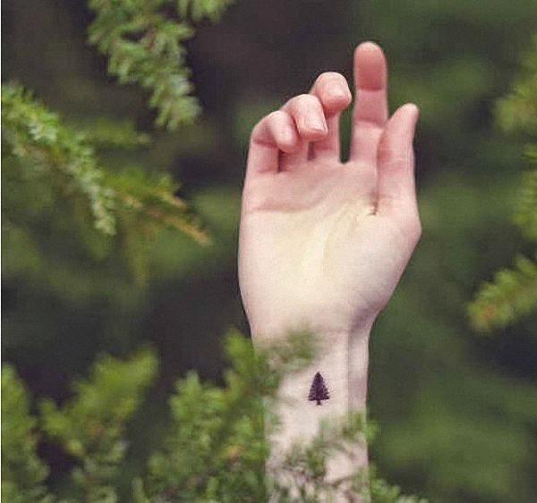arvore_de_tatuagens_6