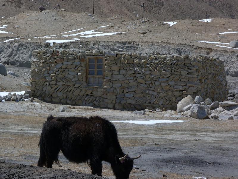 XINJIANG. Karakoram Highway, lune des plus haute route au monde, en passant a 4400 m - P1280525.JPG