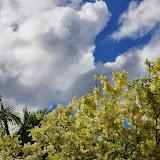 06-27-13 Spouting Horn & Kauai South Shore - IMGP9792.JPG