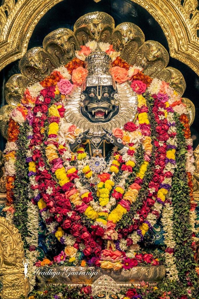 ISKCON Mayapur Deity Darshan 11 Jan 2017 (45)