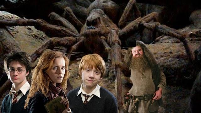 Em 14 de Setembro de 1996 Harry, Rony e Hermione descobrem que Aragogue de Hagrid está morrendo