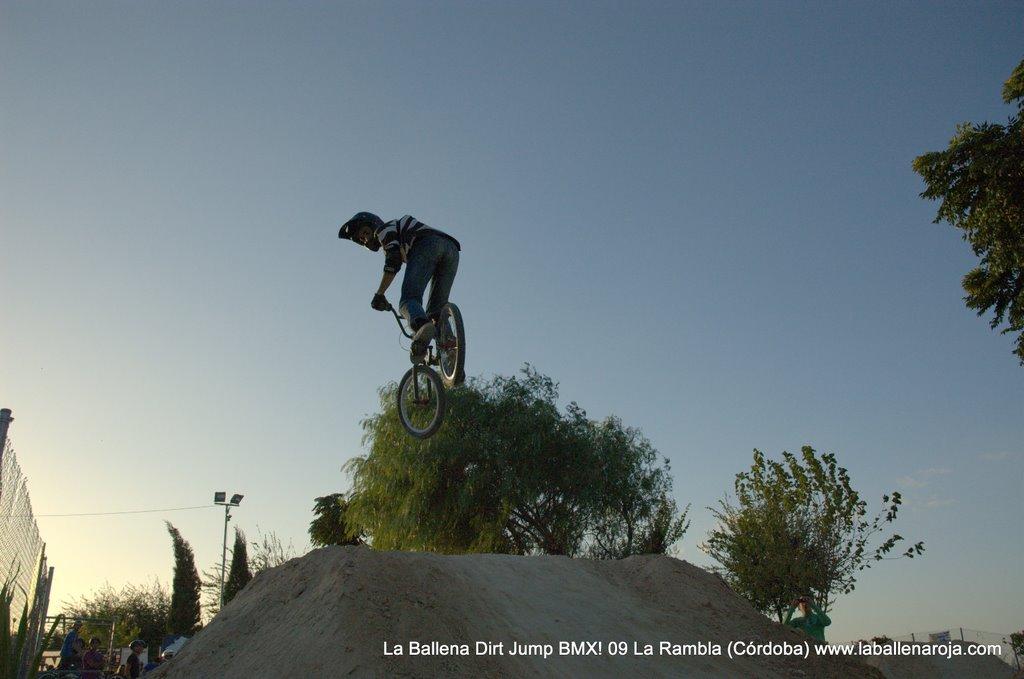 Ballena Dirt Jump BMX 2009 - BMX_09_0134.jpg