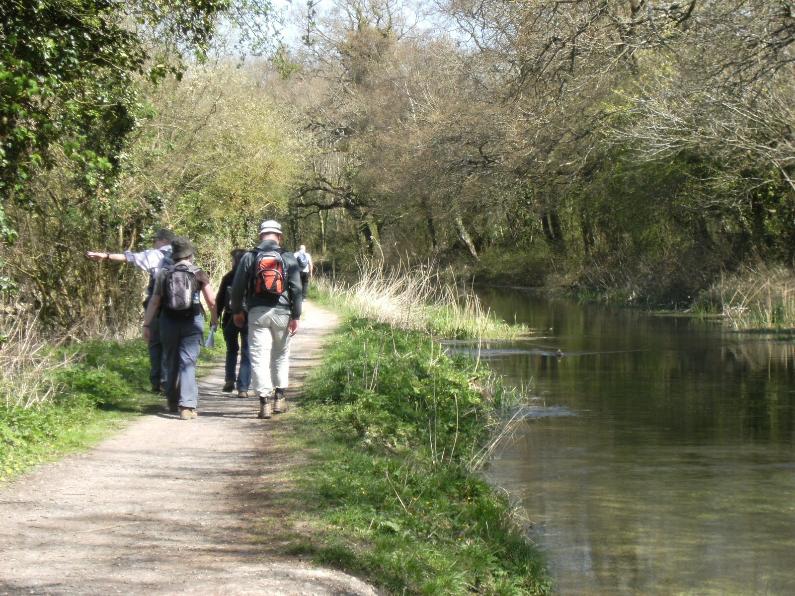 1004170010 Along the Basingstoke Canal