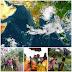 வங்காள விரிகுடாவில் மையம் கொண்டுள்ள  Bul bul சூறாவளி தொடர்பான அப்டேட்..
