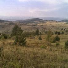 Jesenovanje, Črni Dol - photo14.jpg