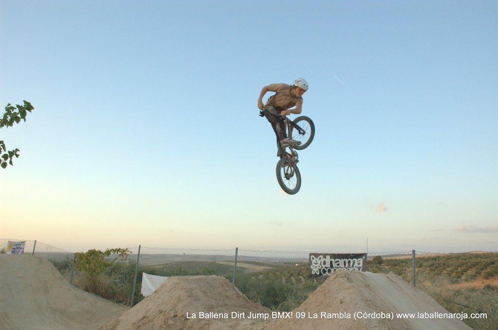 Ballena Dirt Jump BMX 2009 - BMX_09_0158.jpg