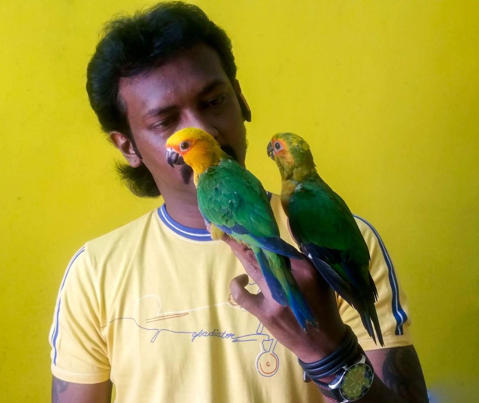 Preethi Farms (exotic birds breeders)