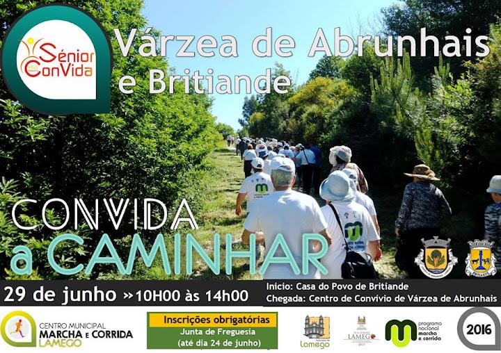 Convida a Caminhar em Lamego termina época desportiva