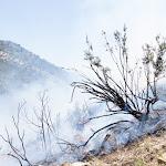 Incendi Controlat Onil-17.jpg