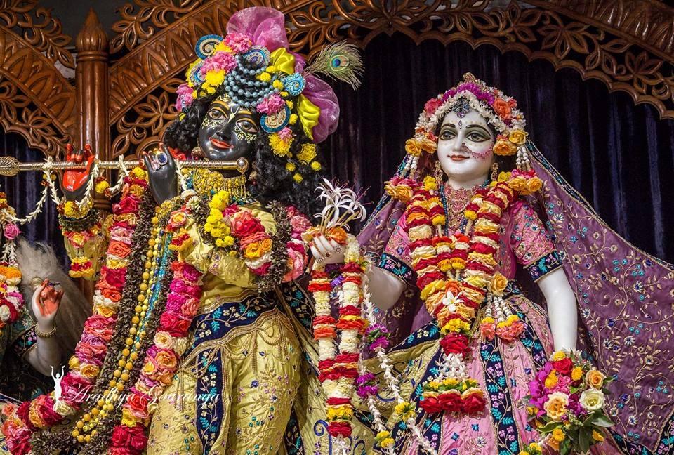 ISKCON Mayapur Deity Darshan 02 Feb 2016 (16)