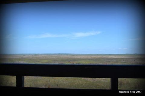 Paynes Prairie Basin