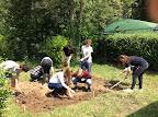 '15 - '16 Biodiversiteit in een schooltuin