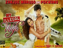 فيلم My Illegal Wife