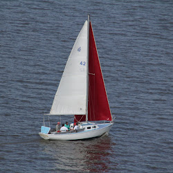 Dauphin Island Race 2013 025