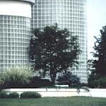 images-Landscape Design and Installation-lnd_dsn_6.jpg