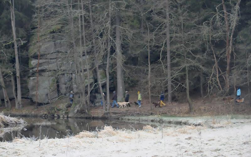 20140101 Neujahrsspaziergang im Waldnaabtal - DSC_9823.JPG
