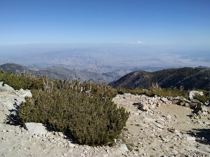 Mount San Gorgonio • View of Joshua Tree National Park