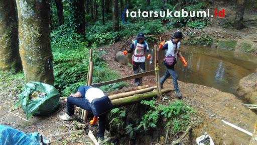 Sapu Gunung Diatas Ketinggian 1300 Mdpl Kawah Ratu Taman Nasional Halimun Salak