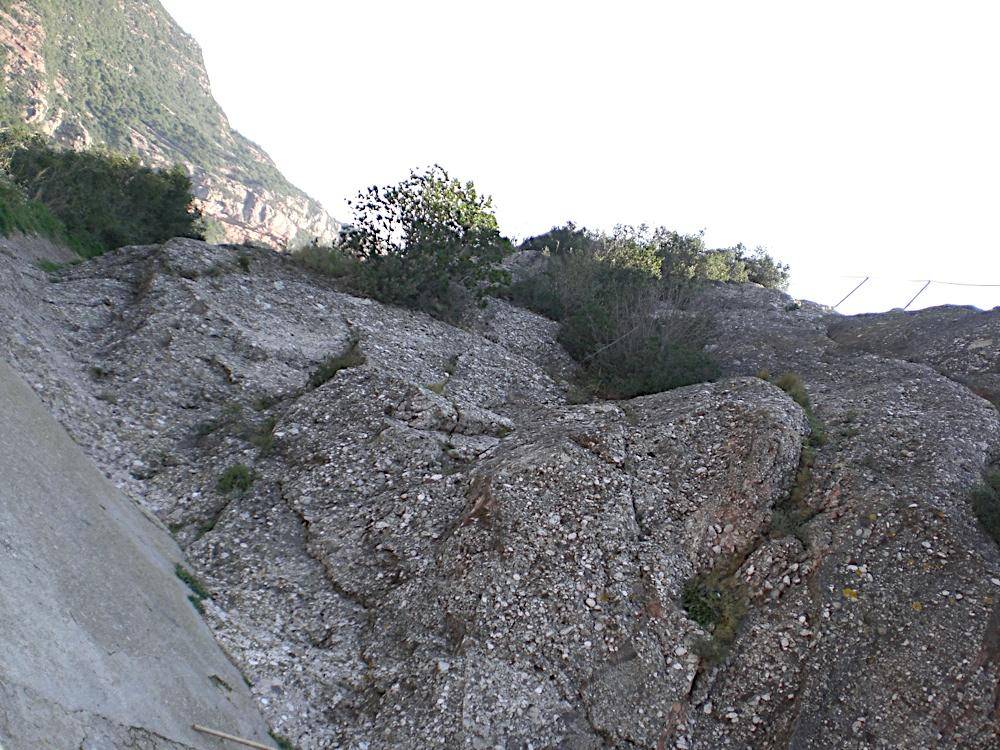 Sortida Sant Salvador de les espasses 2006 - CIMG8367.JPG