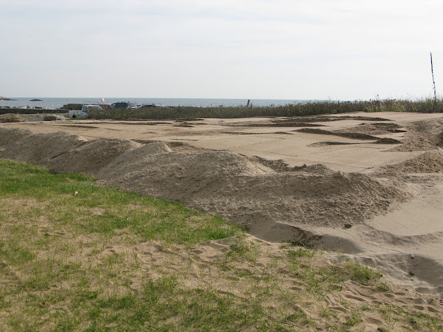 West Wharf Dune Restoration - IMG_8262.JPG