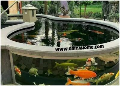 kolam ikan akuarium