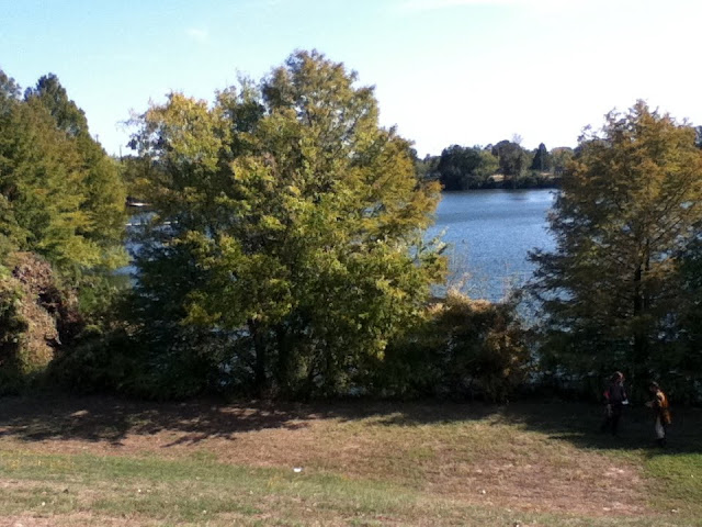 The view of the lake.