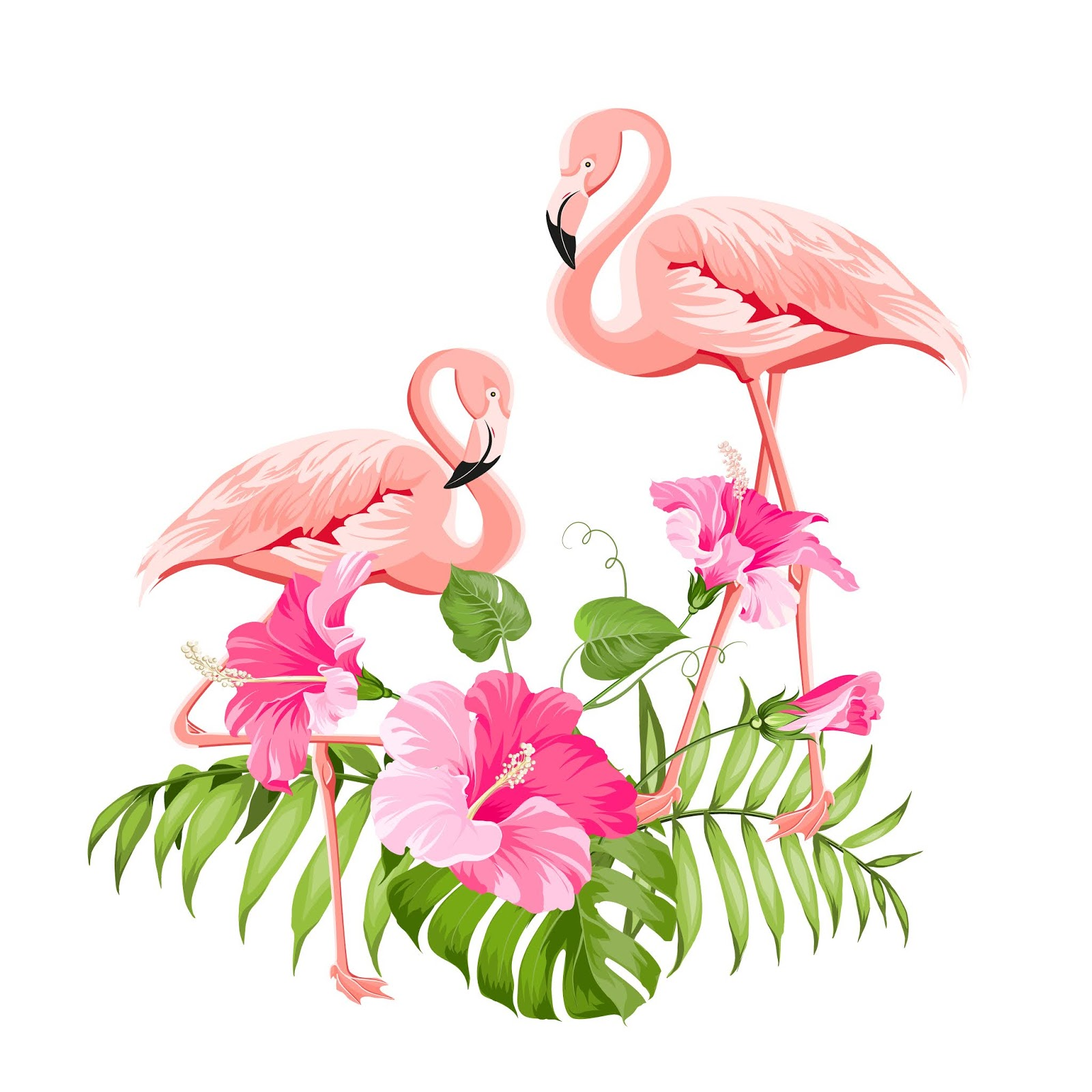 Tropical Flower Flamingos Free Download Vector CDR, AI, EPS and PNG Formats