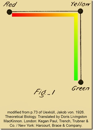 Uexkull. Theoretical Biology. Fig1.Eng.ColorSquare.PS.Xb