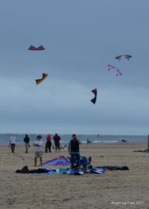Kite demonstration