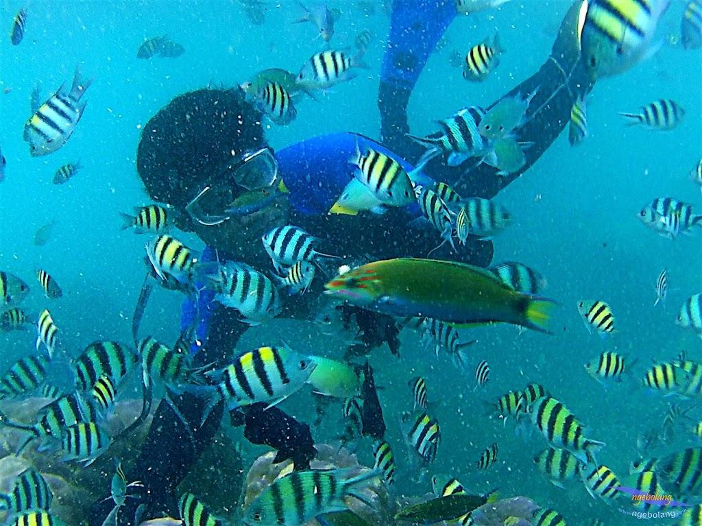 pulau harapan, 6-7 juni 2015 samsung gopro be 18