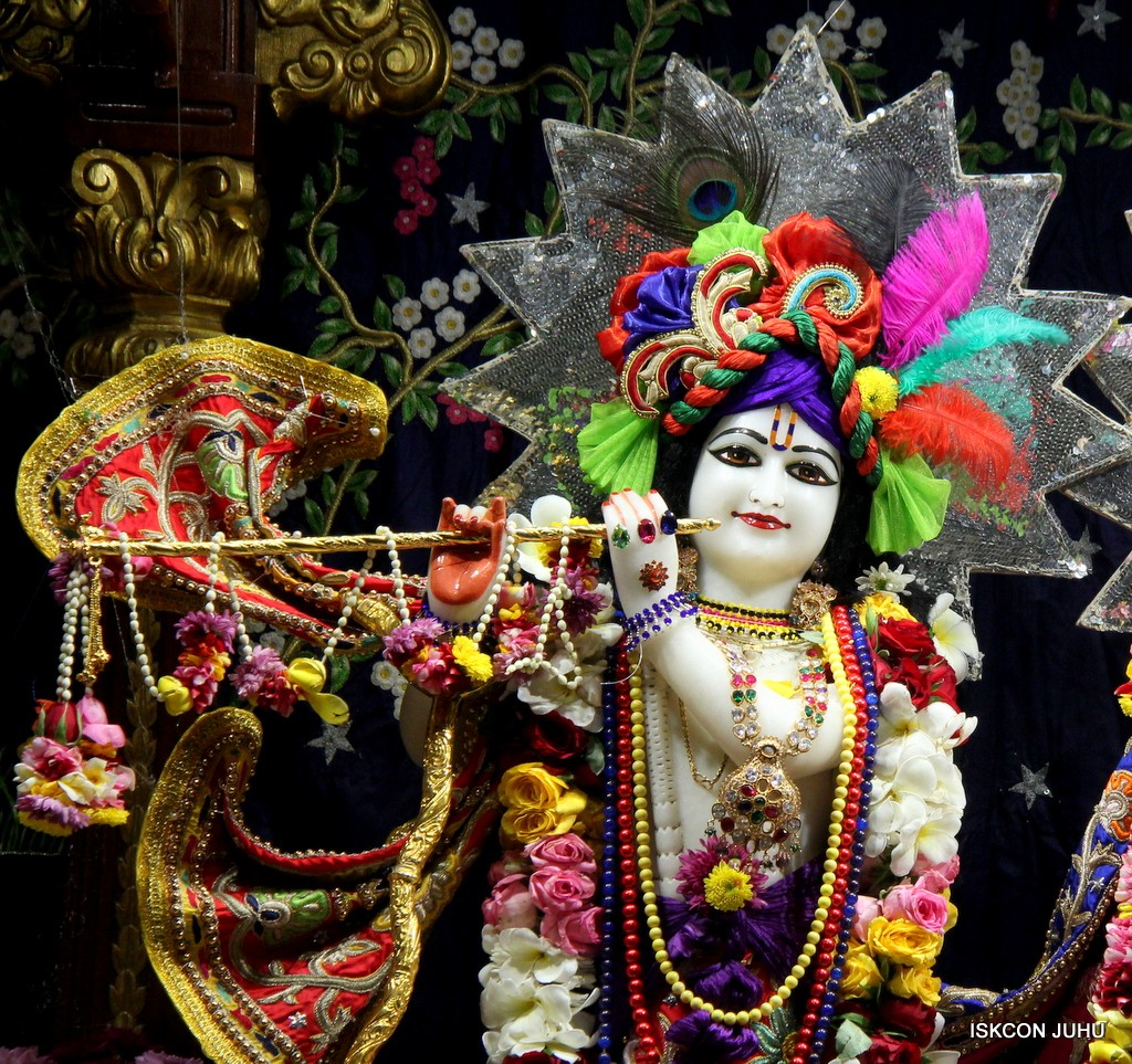 ISKCON Juhu Sringar Deity Darshan 22 Nov 2016 (4)