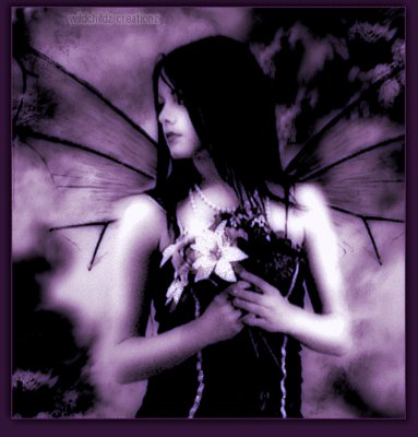 Purple Darkness, Night Magic