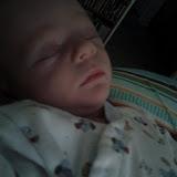 Meet Marshall! - IMG_20120604_190321.jpg