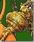 Hanuman_flowers.jpg14