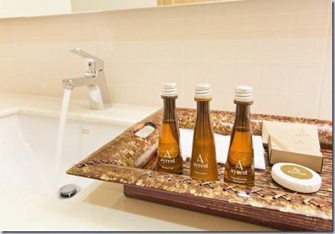 room_amenities5