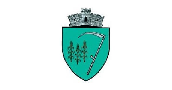 Concurs angajare șef birou - Primăria Comunei Siminicea