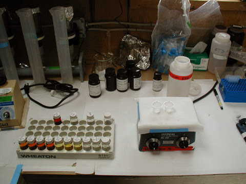 Lab set-up for mini-Winkler titrations