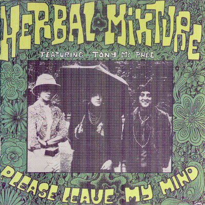 Herbal Mixture ~ 1993 ~ Please Leave My Mind