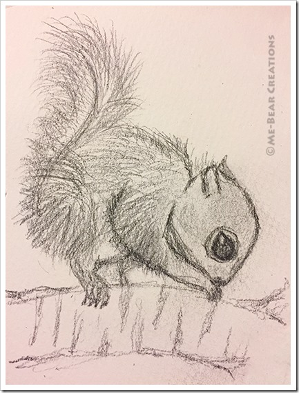 Baby_squirrel_01